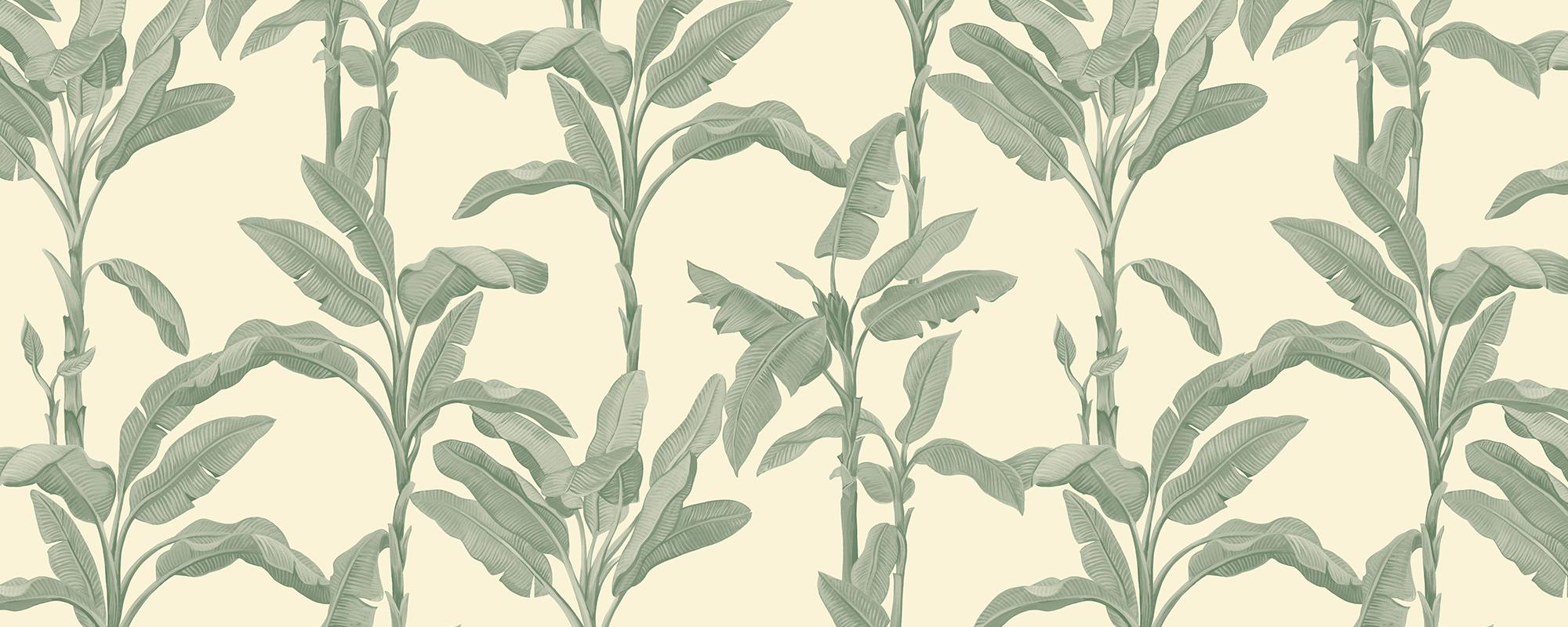 Papier peint motif feuilles de bananier