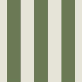 papier peint vert à rayures