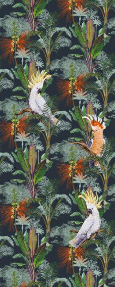 Papier peint tropical avec perroquets en série limitée