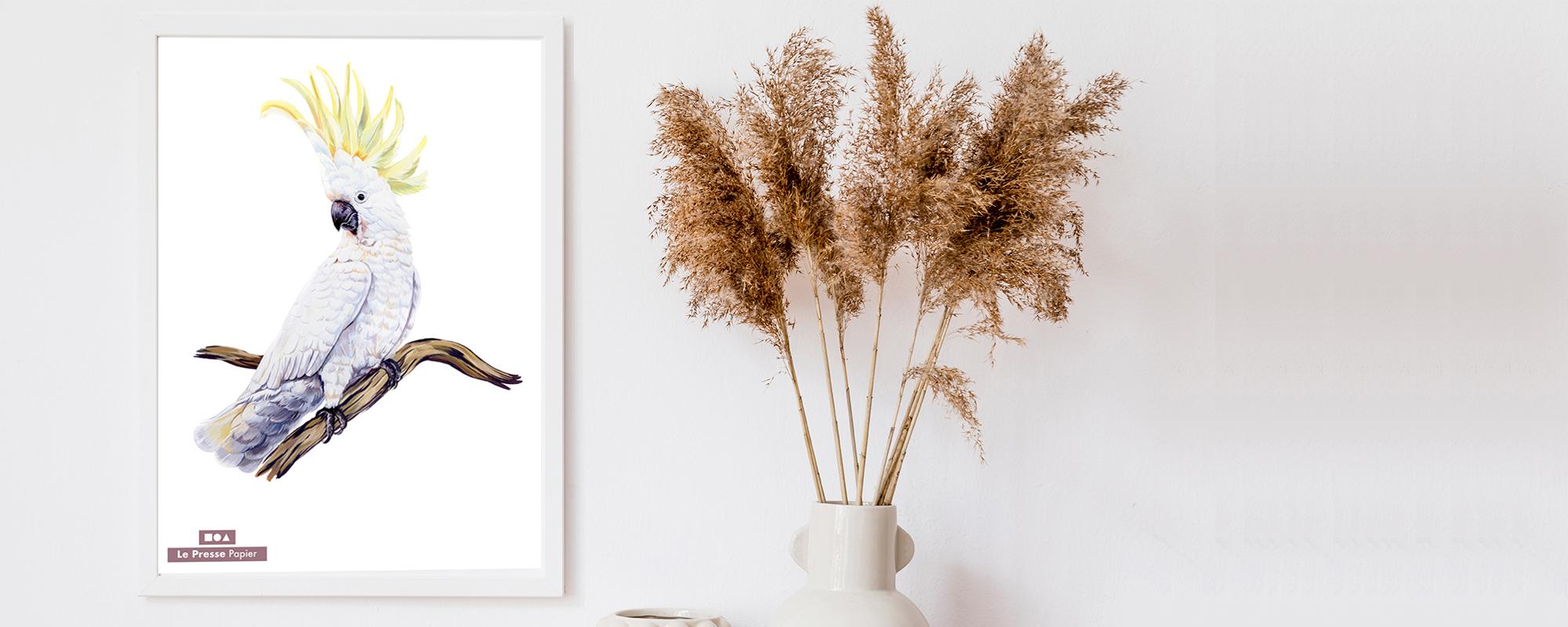 perroquet papier peint